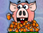 الخنازير و البندق
